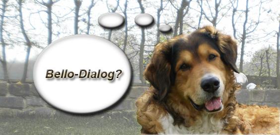 Bello Dialog - reden mit dem Hund